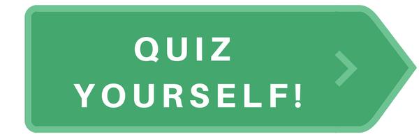 Quiz Yourself with VisionHero Quizzy